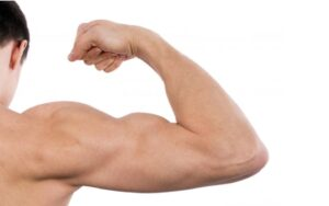Como Ficar Musculoso