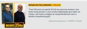Depoimento de Reinaldo Pelegrino